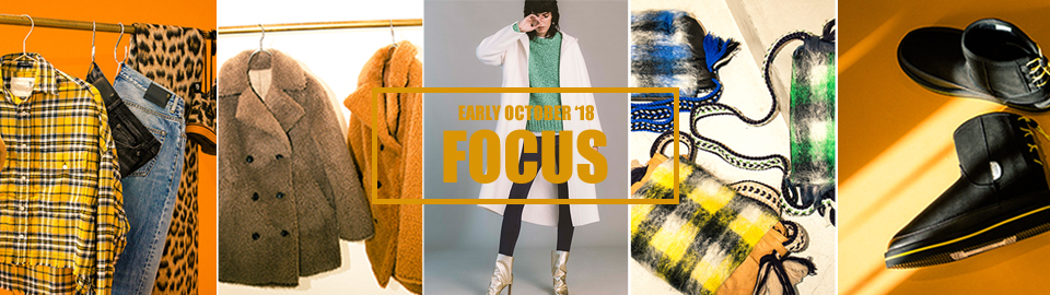 EARLY OCTOBER 2018 FOCUS